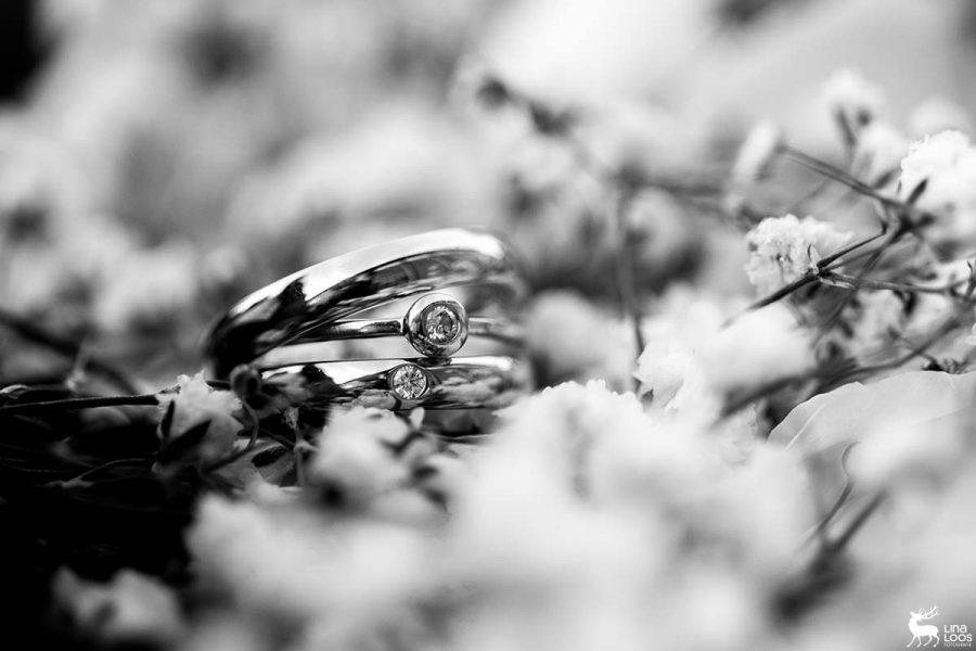 Hochzeit-CS-Driburg-LinaLoos-3904