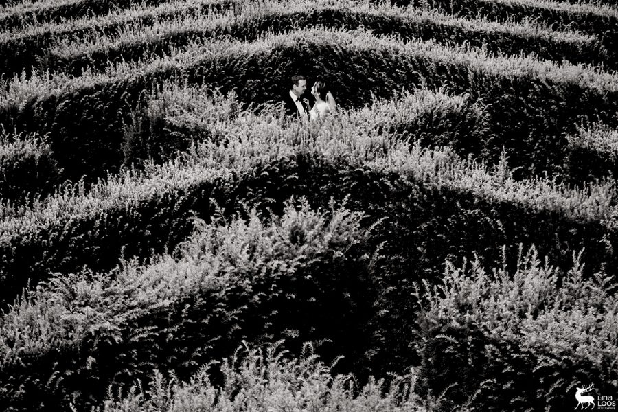 Hochzeit-GraflicherPark-Labyrinth-LinaLoos1-1