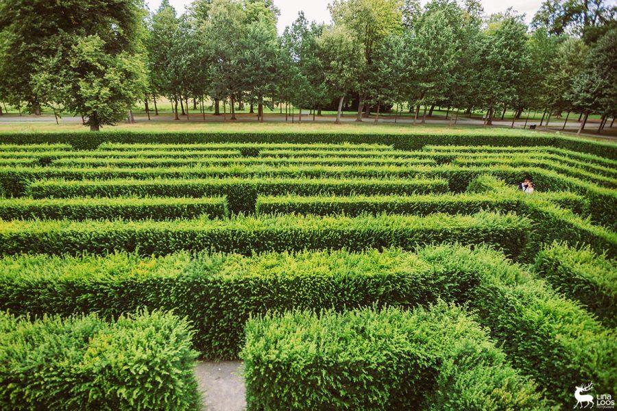 Hochzeit-GraflicherPark-Labyrinth-LinaLoos2